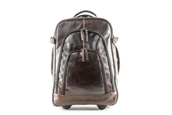 Backpack / Trolley ACHENSEE